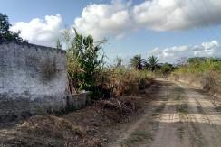Granja em São Lourenço da Mata com casa sede
