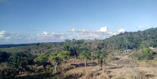 Sítio com 2,2 hectares em São Lourenço da Mata
