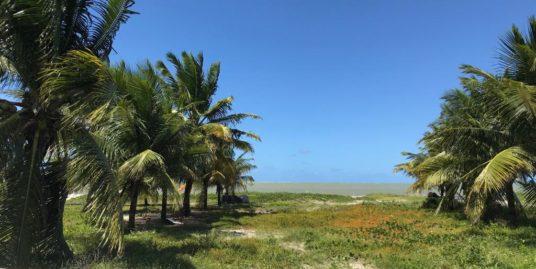Casa a Beira Mar de Itamaracá, 5 quartos