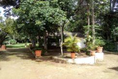 Sitio em Aldeia com 3,5 hectares
