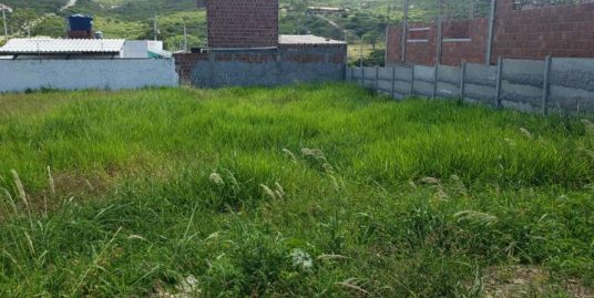 Vendo lote de terreno possui 250 metros quadrados em Cruzeiro – Gravatá – PE